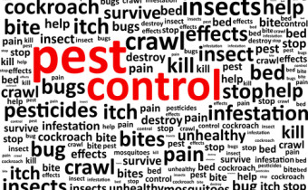 How to Develop Effective Pest Control for Your Business